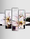 dipinto a mano olio su tela con cornice floreale allungata - Set di 5