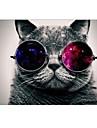 """Cool Cat designen hela kroppen skyddande plastväska för 13 """"/ 15"""" MacBook-pro med Retina-skärm"""