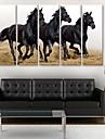 e-FOYER toile tendue es un cheval courir decoratif ensemble de cinq de peinture