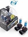 hm® xenon plasma 9006 12v 100W halogenlampa strålkastare vita glödlampor (ett par)