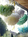 Wedding Décor 10 PCS 4 Inch(10cm) Tissue Paper Crafts Pom Poms Flower Party Decoration (Assorted Color)