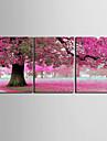 e-Home® sträckta canvas konst persikoträd dekoration målning uppsättning av 3