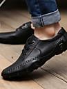 Chaussures Hommes Decontracte Noir / Marron Cuir Richelieu