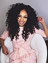 brasilianska jungfru hår kinky lockigt fullt spets peruk limfria fullt spetsar peruker
