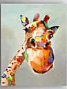 Pintados a mao Animal / PopModern 1 Painel Tela Hang-painted pintura a oleo For Decoracao para casa