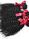 kinky lockigt brasilianskt jungfruligt hår väva 3st / lot 7a brasilianska afro lockigt 100% människohår extenisons buntar 100g / st