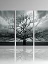 Fritid / Fotografisk / Modern / Romantik / Popkonst / Resor Canvastryck Tre paneler Redo att hänga , Vertikal