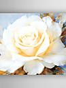 HANDMÅLAD Blommig/BotaniskModerna / Realism En panel Kanvas Hang målad oljemålning For Hem-dekoration