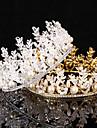Femei Aliaj Diadema-Nuntă Ocazie specială Tiare 1 Bucată