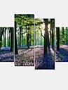 Modern Canvastryck Fyra paneler Redo att hänga,Horisontell