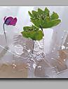 HANDMÅLAD Blommig/Botanisk olje~~POS=TRUNC,Moderna / Klassisk En panel Hang målad oljemålning For Hem-dekoration