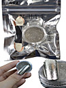 1 Set Nail Art Champagne Silver Glitter Mirror Powder And Eye Shadow Brush Set Nail Decoration B