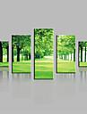 canvas Set Landskap Moderna,Fem paneler Kanvas Vertikal Print Art väggdekor