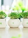1pc/set 1 Gren Others Others Bordsblomma Konstgjorda blommor Without  Flower