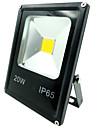 20w conduit lumiere crue 1500lm outdoorlight IP65 etanche fraiche projecteur de couleur chaude / blanc pour la maison (AC85-265V)