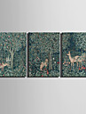 Animal / Botanico Impressao em tela 3 Paineis Pronto para pendurar , Horizontal