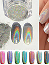 2g låda spik spegel silver pulver färgrik spik tillbehör ta svabb
