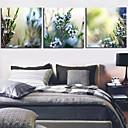 3 1301-0148のキャンバス地プリント植物花のセット