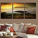 Rastegnut Canvas Art Pejzaž Kilimanjaro Mountain Set od 3