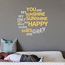jiubai® quote jsi moje sluníčko zeď nálepka Lepicí obraz na stěnu, 58cm * 58cm