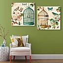 E-home® pruži platnu umjetnosti ptice i cvijeće dekorativna slikanje set od 2