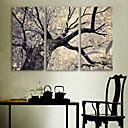 E-home® pruži platnu si stablo ukras slikarstvo set 3