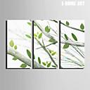 Botanisch Canvas Afdrukken Drie panelen Klaar te hangen , Verticaal