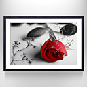 花柄/植物の / 静物 額入りアートプリント ウォールアート,ポリスチレン ブラック マットあり フレーム付き ウォールアート