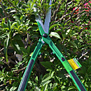 緑色のハンドルスティックフルーツ切削工具とsellery剪定ばさみガーデン鋏