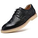 Oxfordské-Kůže-Jiné Bullock boty-Pánské-Černá Hnědá-Běžné-Plochá podrážka