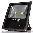 2leds 100W toplo / hladno bijela dovela reflektor IP65 vodootporan vanjski svjetlo zidne lampe projekte za vrt dovele poplava svjetla