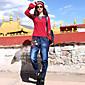 Větší velikosti Štíhlý Džíny Dámské Kalhoty-Tisk Běžné/Denní Cikánský Výšivka Mid Rise Pružnost Bavlna Mikroelastické podzim / zima